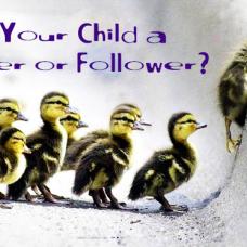 leadership or follower